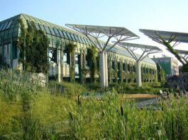 Ogród Botaniczny PAN